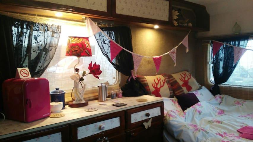 Classic Vintage Boutique Camper - Newquay - Husbil/husvagn