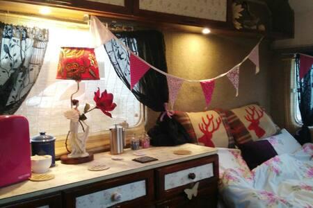 Classic Vintage Boutique Camper - Newquay