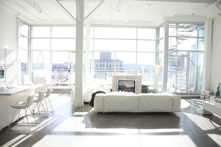 Entire 1400sf white loft with large deck + rooftop
