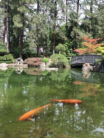 Manito's Japanese Garden