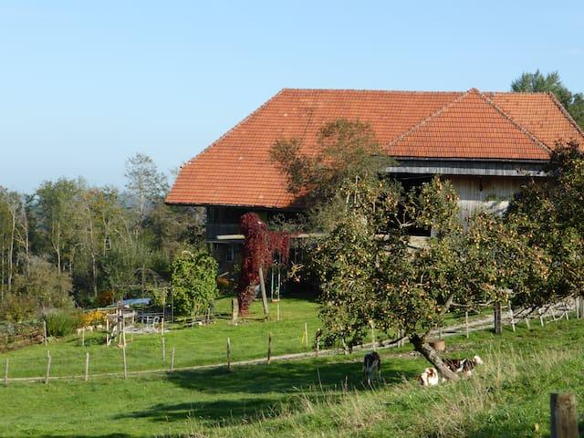 B&B Zum Hinkelstein mitten in Natur - Guggisberg - Bed & Breakfast