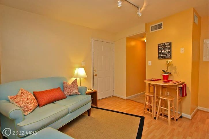 place entire apt apartments for rent in washington district