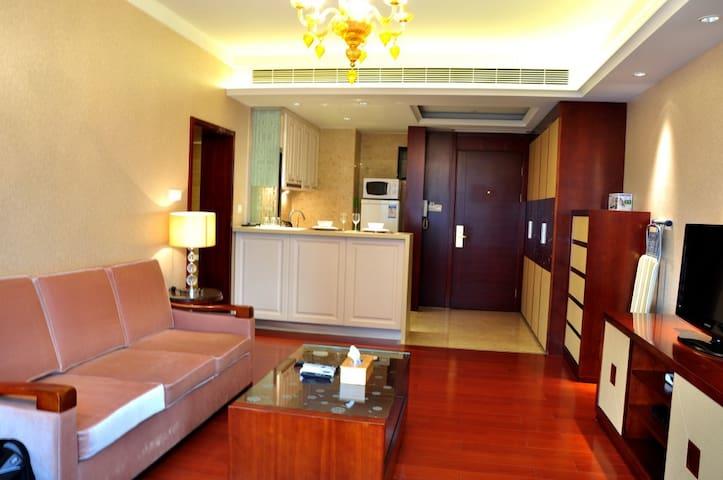 Near to nanjing rd 1br 1 livingrm apartments for rent in shanghai shanghai china - Ekia furniture ...