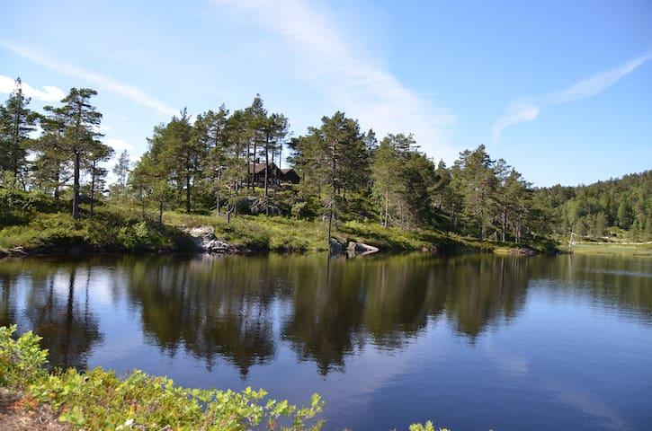 Moderne familiehytte  i naturskjønne omgivelser - Dølemo - Kabin