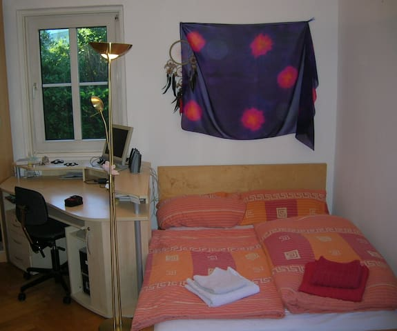 Quiet room close to city center - Salzburg - Hus