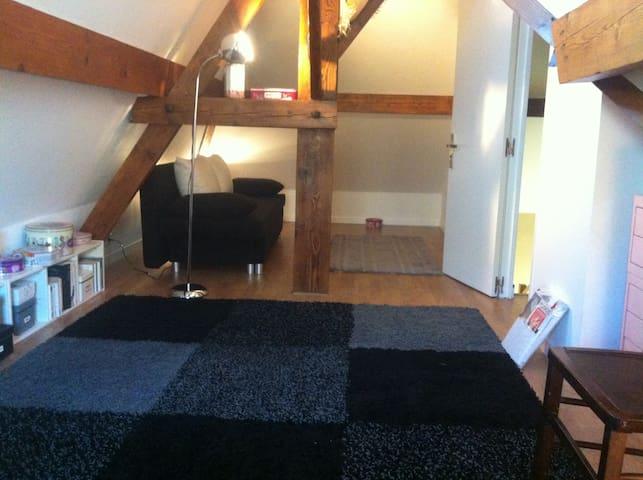 One large bedroom (18m2) cosy house - Saint-Maur-des-Fossés - House