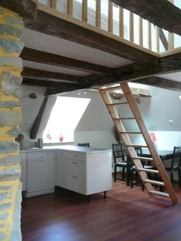 Confort, caractère, quartier ancien, bord de mer. - St-Malo - Apartamento
