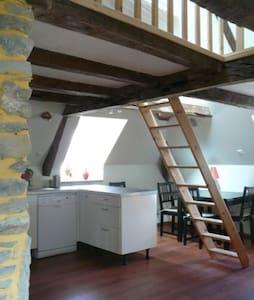 Confort, caractère, quartier ancien, bord de mer. - St-Malo