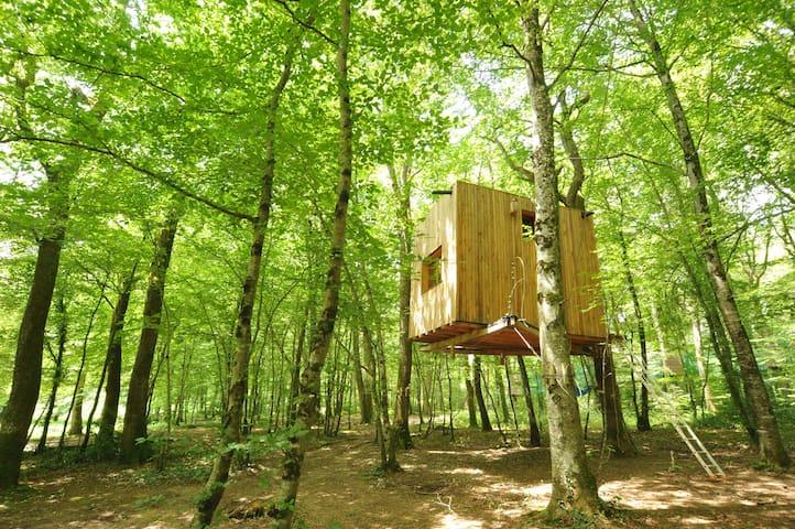 Cabane dans les arbres,  cabane Ecureuil