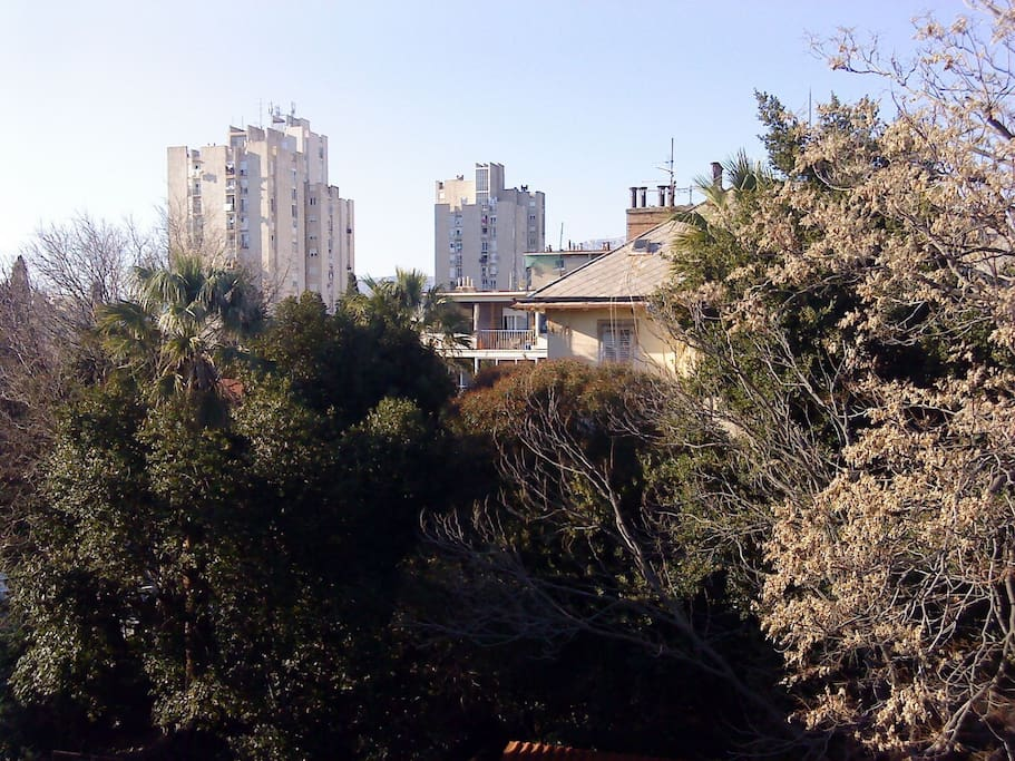 A(4): view