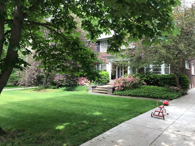 Historical Charm & Modern Elegance in CLE Heights