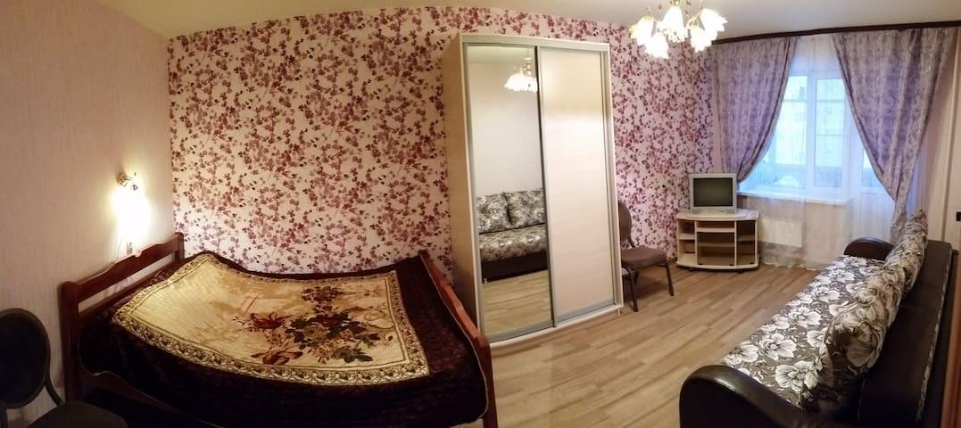 Уютная квартира в центре города - Kolomna - Lejlighed