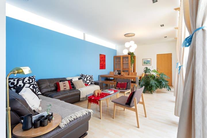 Beautiful big family Apartment, Condesa.