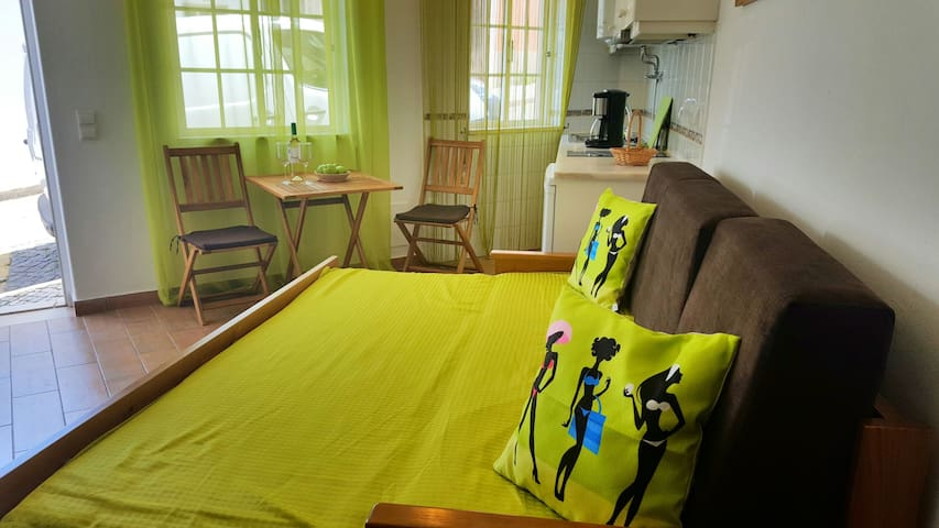 Cozy studio with a confortable sofá bed