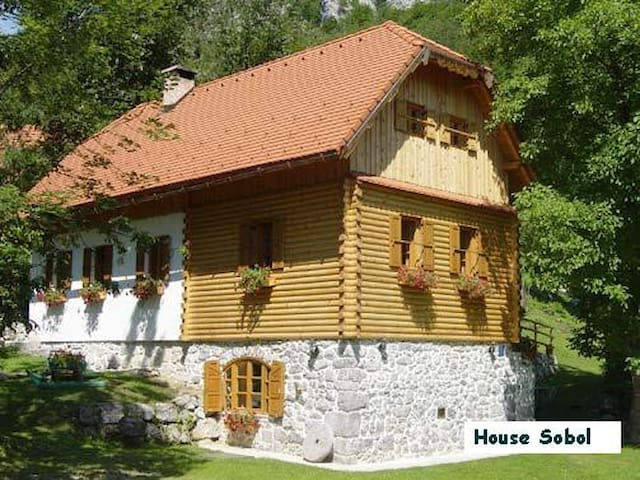 Holiday house Sobol in Croatia - Kočičin - Talo