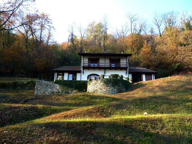 Beautiful villa with garden on lake