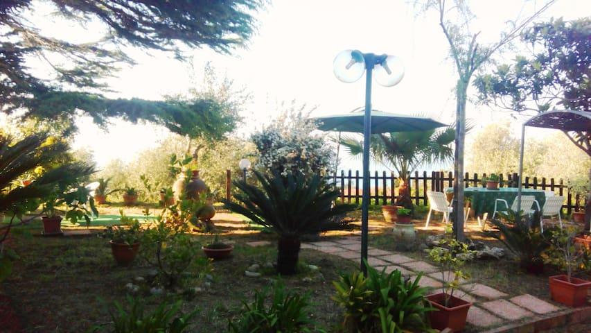 Spazioso appartamento panoramico con giardino - Santa Domenica - Apartment