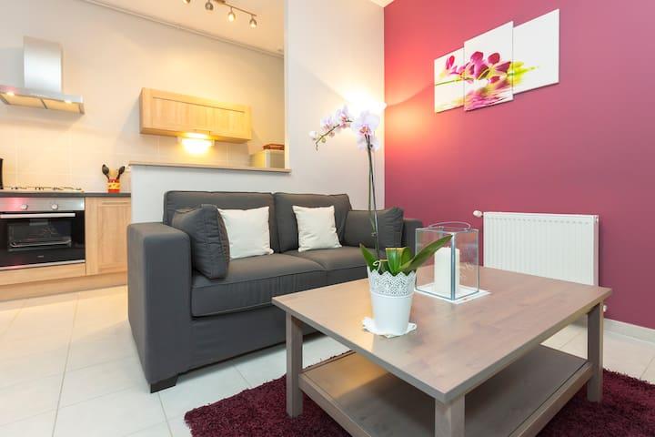 2 pièces 51 m2 centre Avignon - Avignon - Appartement