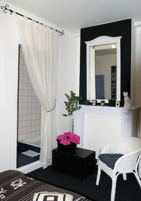 Black & White Room: television, bathroom with shower and sink.
