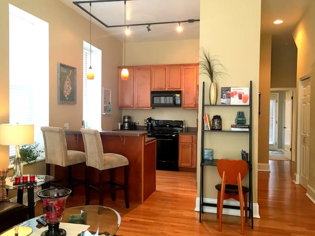 Cozy One Bedroom Apt on Soulard - St. Louis - Apartament