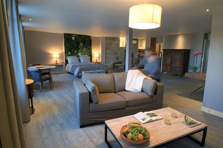 chambres d'hôtes en ville - Brive-la-Gaillarde - ที่พักพร้อมอาหารเช้า