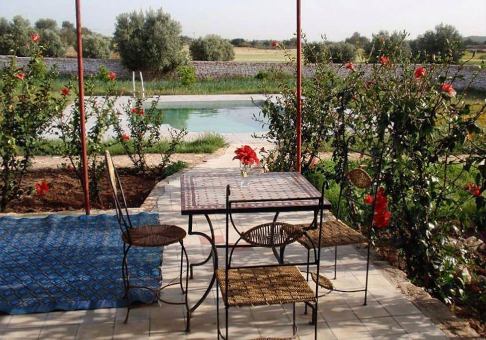 Depuis la terrasse la quiétude du jardin