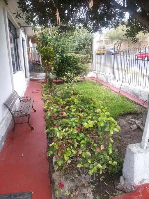 patio delantero