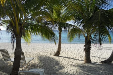 Quiet Beachfront 2 bed  condo *Last Minute Special - Spotts