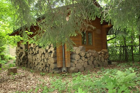 Small forest cabin minutes away from Moscow