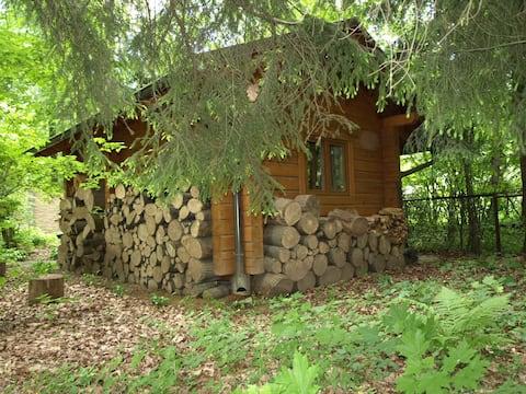 Pequeña cabaña forestal a pocos minutos de Moscú