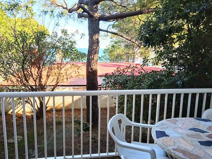 063 Location Appartement vue mer dans quartier calme