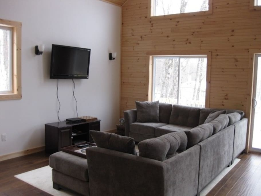 Large comfortable couch in bright living room.