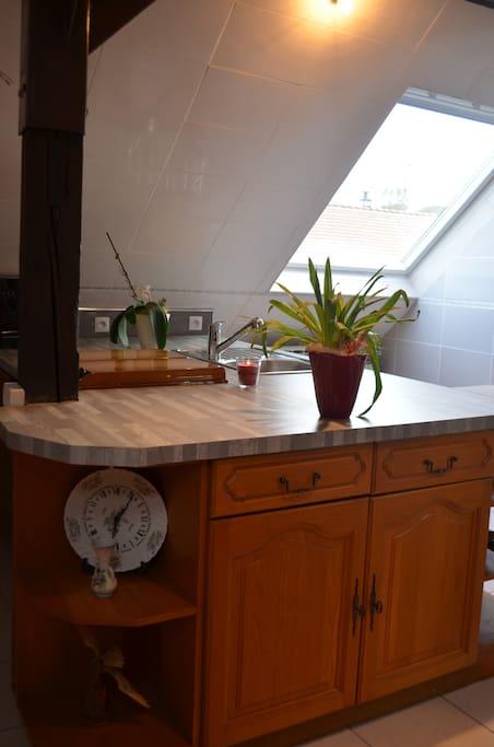 Appartement en maison individuelle appartements louer - Appartement meuble a louer strasbourg ...