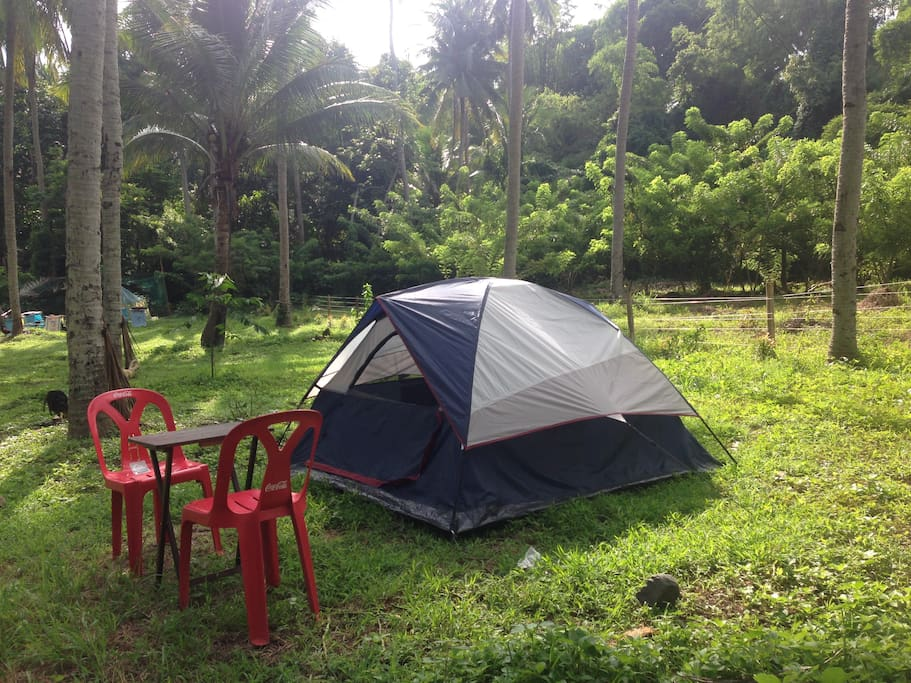 Assemble your tent or stay in a small farm cottage house
