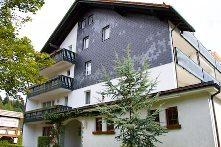 H.O.M.E. Suites Apartment 3 - Braunlage - Apartment