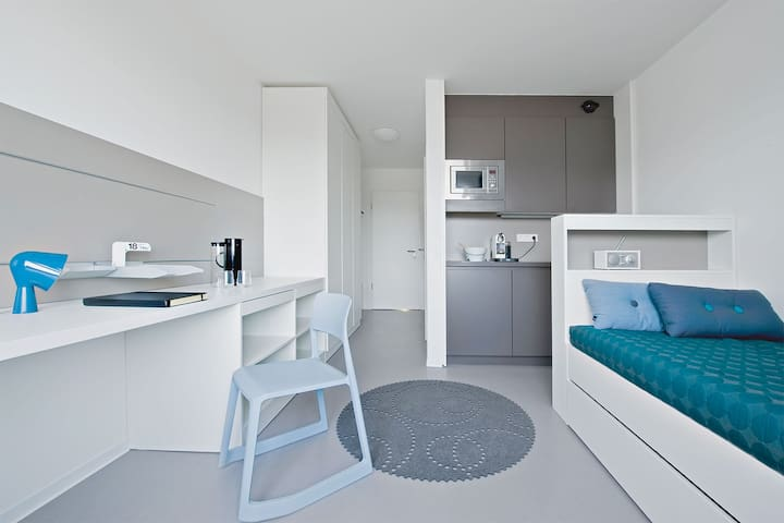 Entire Apartment in Bahnstadt