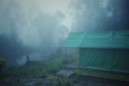 jungle camp in kanthalloor, munnar