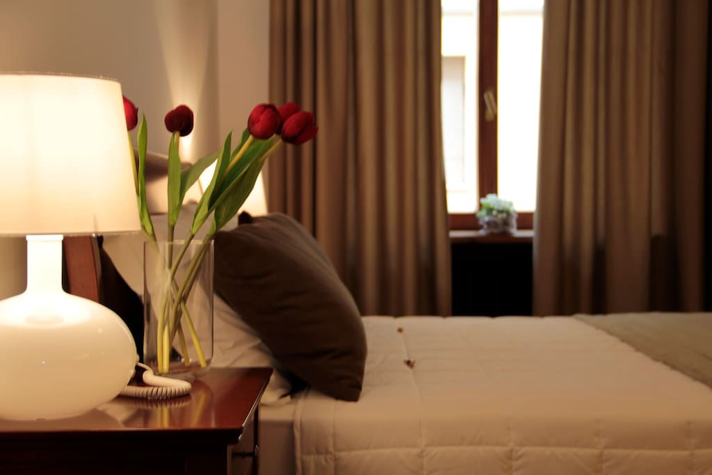 saint peters chat rooms Book the vatican apartments - stpeter's basilica in rome & read reviews best price guarantee these apartments are located throughout the area in rome.