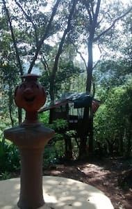 Treehouse with pool in NGoa - Aldona
