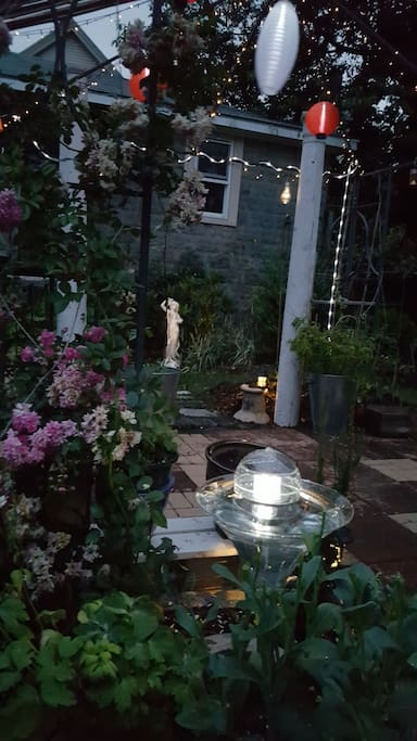 Back Garden at night 2017