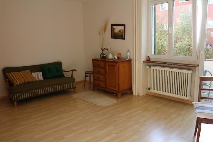 cozy flat in Lorraine