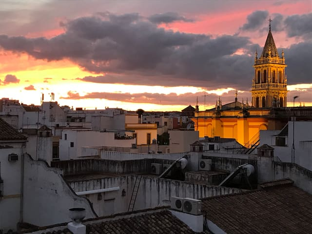 Attic in the heart of Seville with terrace 1/3Pax