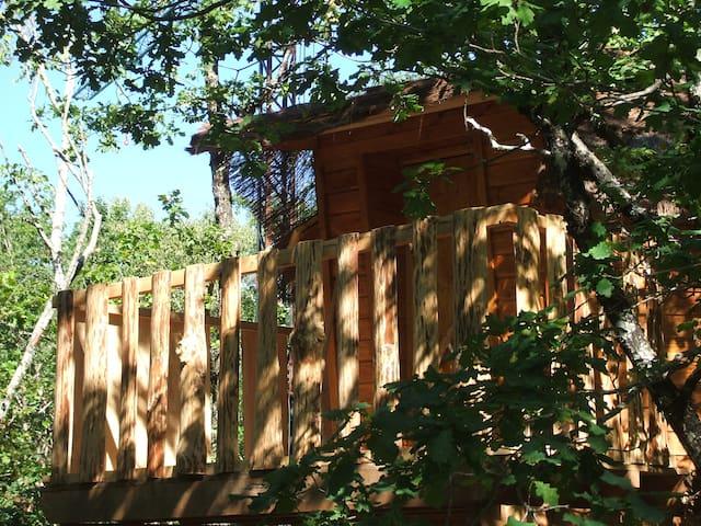 Cabanes dans les arbres - Camps-Saint-Mathurin-Léobazel - Casa na árvore