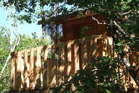 Cabanes dans les arbres - Camps-Saint-Mathurin-Léobazel - 树屋