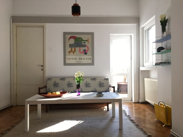 Scandinavian Modernist Charm - București - Appartement