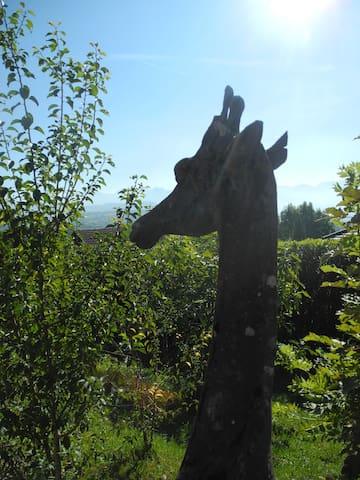 Le printemps au chalet la girafe... - Bonne - Almhütte