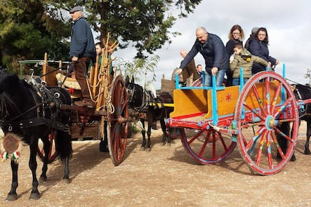 The power of sharing: free accomodation in Apulia - Cassano delle Murge - Apartemen