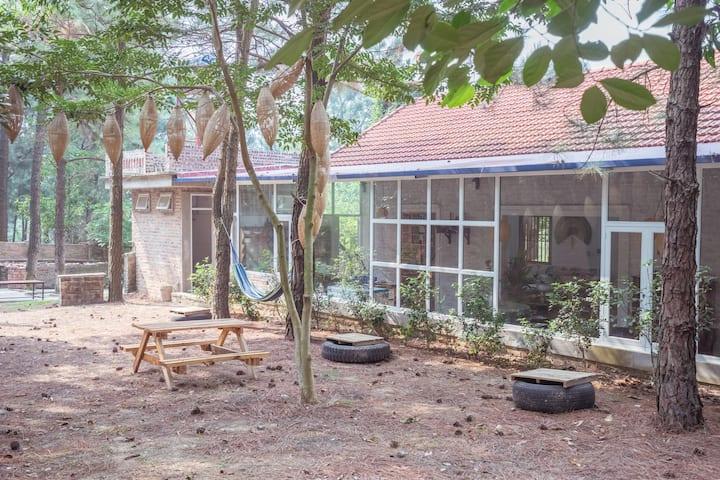 Vườn Quả Villa - Urban Getaway