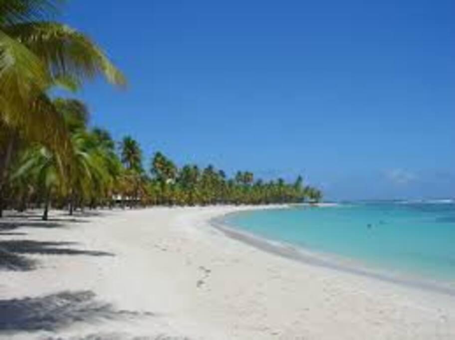 La plage de la Caravelle, une des plus belles de la Guadeloupe