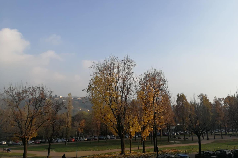 Parco lungo Po
